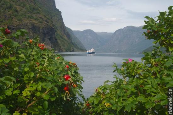 Aurlandfjord bei Flåm