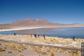 Von Einsamkeit keine Spur: Touristen an einer Lagune mit Flamingos