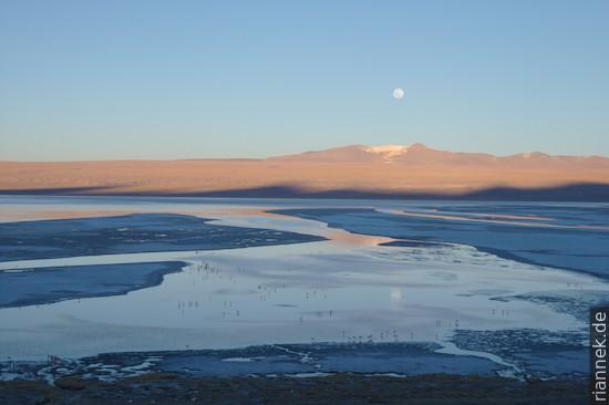 Mondaufgang an der Laguna Colorada