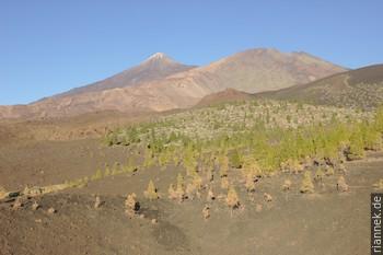 Teide und Pico Viejo von Montaña Somara (...einem Schlackenkegel der Santiago-del-Teide-Riftzone)