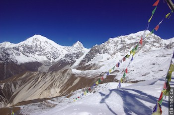 Langtang Lirung (7234 m), Kimshung (6760 m) und Dragpoche (Yansa Tsenji, 6562 m) vom Tsergo Ri