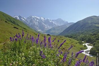 Dzangitau und Shkhara vom Tal oberhalb Khalde