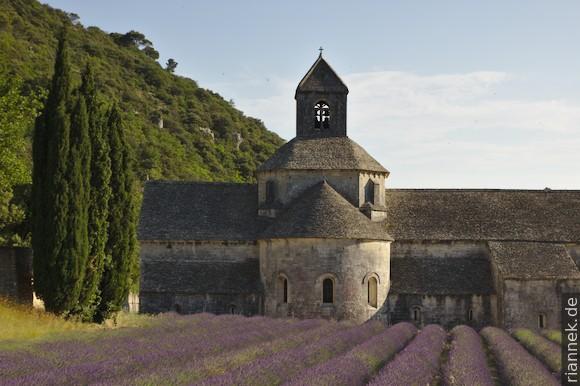 Notre-Dame de Sénanque mit Lavendel