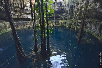 Cenote Oxman bei Valladaloid